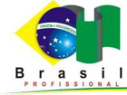 brasil profissionalizado