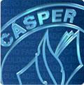 Faculdade Cásper Líbero logo